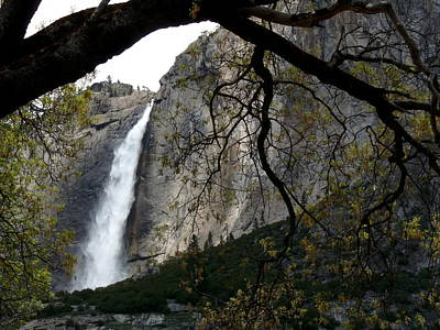 Photograph - Yosemite Falls Framed By Oak by Jeff Lowe