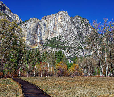 Yosemite Falls From Cook's Meadow Print by Scott McGuire