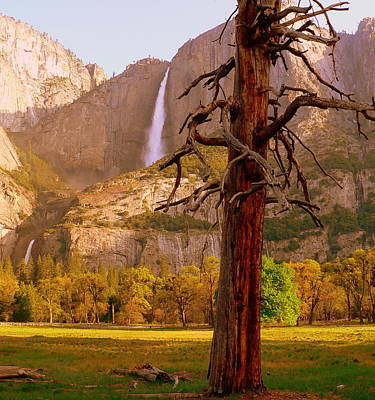 Photograph - Yosemite Falls In Morning by Jeff Lowe