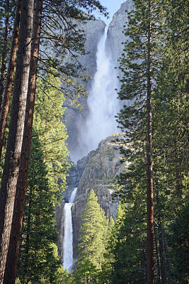 Yosemite Falls In Morning Splendor Art Print