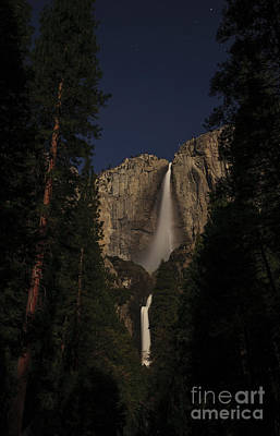 Photograph - Yosemite Falls Under The Moonlight by Deby Dixon