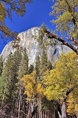 Photograph - Yosemite In November by Gordon Elwell