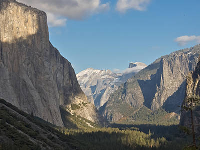 Yosemite National Park Art Print by Steven Lapkin