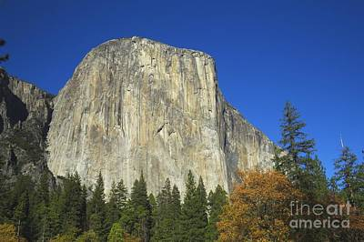 Yosemite Np Photograph - Yosemite Np Series 5 by Scott Cameron
