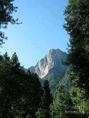 Yosemite Park Art Print