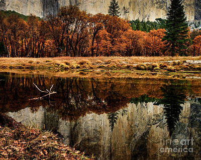 Yosemite Reflections Art Print by Terry Garvin