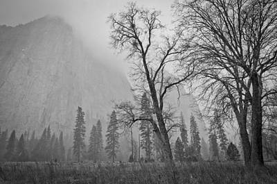 Yosemite Storm Art Print by Priya Ghose