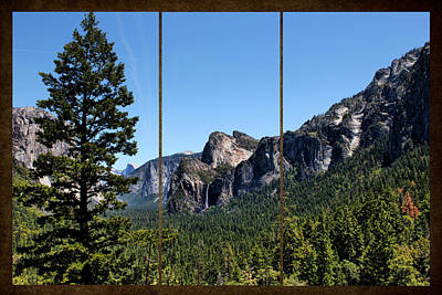 Photograph - Yosemite Triptych by Judy Vincent