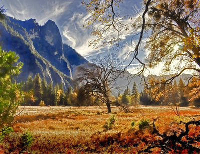 Photograph - Yosemite Valley Floor by Dana Sohr