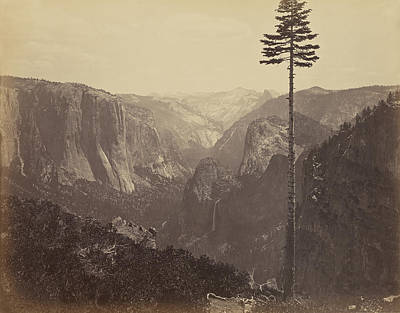 Yosemite National Park Drawing - Yosemite Valley From The Best General View Carleton Watkins by Litz Collection