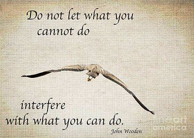 Photograph - You Can Do It  by Kerri Farley