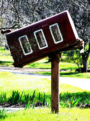 Photograph - You Have Mail by Holly Blunkall