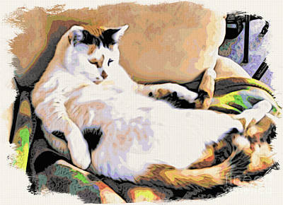 Of Calico Cats Photograph - You Move The Stuff From The Corrner. I Need My Nap. by Phyllis Kaltenbach
