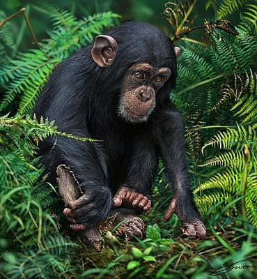 Chimpanzee Digital Art - Young Chimpanzee With Tool by Owen Bell