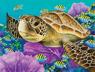 Underwater Seascape Photograph - Young Green Sea Turtle by Carolyn Steele