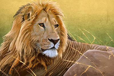 Big Cats Digital Art - Young Lion by Aaron Blaise