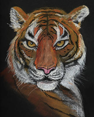 Painting - Young Tiger by Dorothy Riley