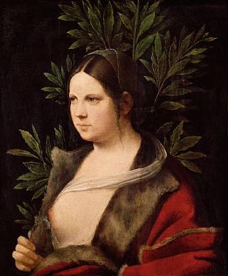 1506 Painting - Young Woman by Giorgione