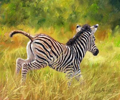 Zebra Painting - Young Zebra by David Stribbling