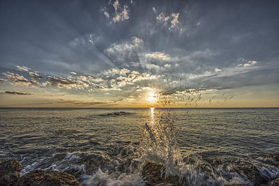 Photograph - Your My Sun by Jon Glaser
