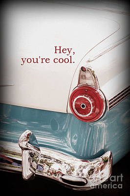 Photograph - You're Cool by Valerie Reeves