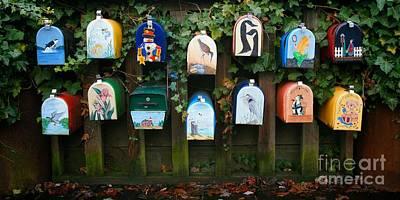 Mail Box Photograph - You've Got Mail by Chris Dutton