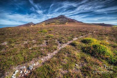 Yr Eifl Trail Print by Adrian Evans