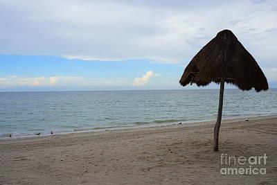 Photograph - Yucatan by Rachel Munoz Striggow