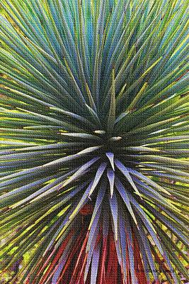 Art Print featuring the photograph Yucca At The Arboretum by Tom Janca