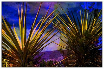 Outdoor Still Life Mixed Media - Yucca by Bob Pardue