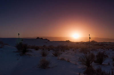 Janet Smith Photograph - Yucca Dunes by Janet Smith