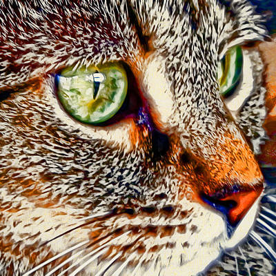Kitty Digital Art - Yuki's Stare by David G Paul