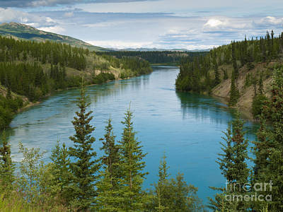 Rights Managed Images - Yukon River north of Whitehorse Yukon T Canada Royalty-Free Image by Stephan Pietzko