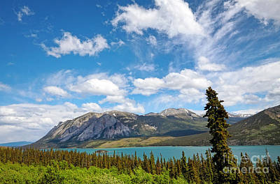 Photograph - Yukon Scenics by Charline Xia