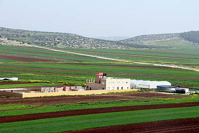 Photograph - Zababdeh Fields by Munir Alawi
