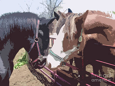 Photograph - Zach Meets Connor Draft Horse Colts Meeting by Conni Schaftenaar