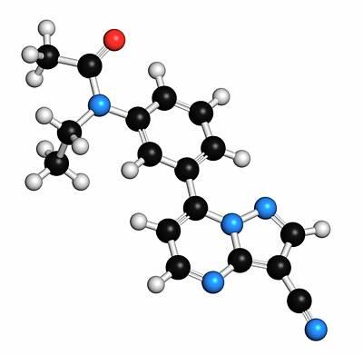 Atomic Image Photograph - Zaleplon Hypnotic Drug Molecule by Molekuul