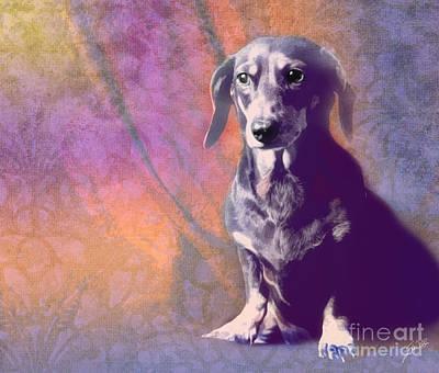 Doxie Digital Art - Zany Doo by Erika Weber