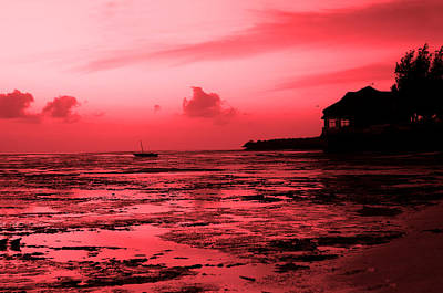Photograph - Zanzibar Sunrise by Aidan Moran