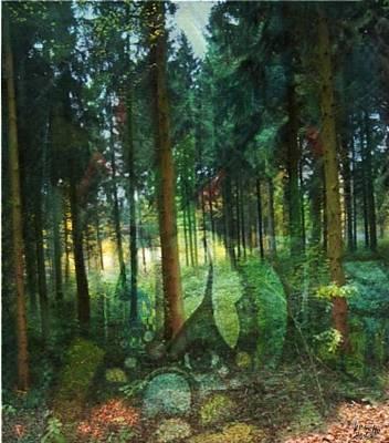 Zauberwald Art Print
