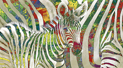 African Mixed Media - Zebra Art - 3 Stylised Drawing Art Poster by Kim Wang