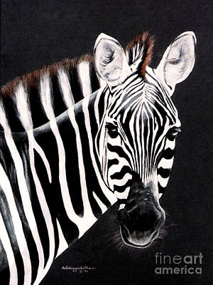 Zebra Facing Right Art Print by DiDi Higginbotham
