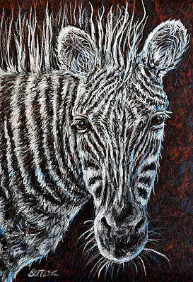 Drawing - Zebra by Gail Butler