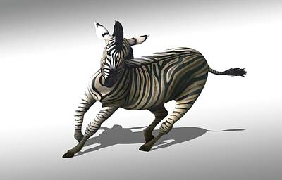 Zebra Galloping Art Print by Mark Garlick