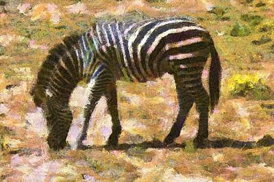 Digital Art - Zebra In The Wild by Carrie OBrien Sibley