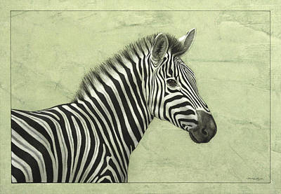 Zebra Drawing - Zebra by James W Johnson