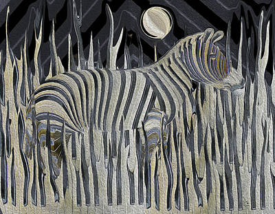 Photograph - Zebra Moonlight Melody by Stephanie Grant