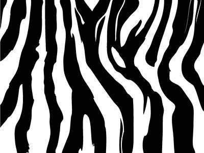 Zebra Print 001 Art Print by Kenneth Feliciano