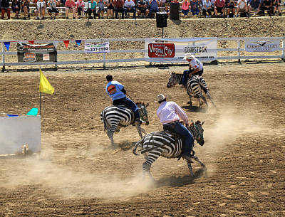 Zebra Races Art Print