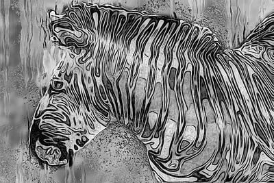 Graze Digital Art - Zebra - Rainy Day Series by Jack Zulli